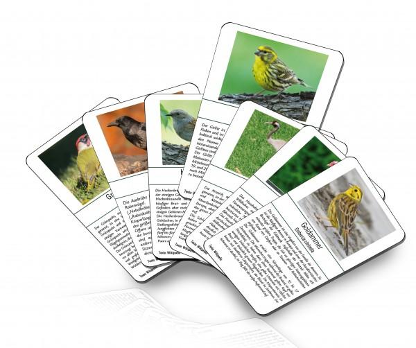 Vogel-Bingo Ersatzspielkarten